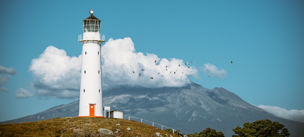 The Birds of the Lighthouse